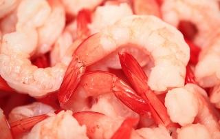 shrimp early mortality